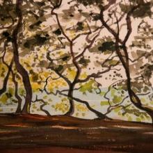 31x23 - chenes verts bois de la chaize - 90