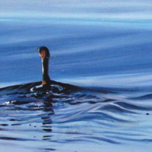 13-d-tm-3-cormorans-a-renault-2013-150x50cm